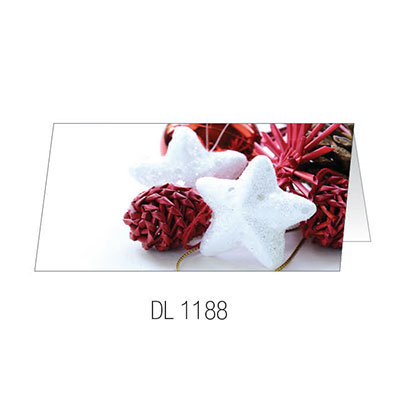 DL1188 Christmas Card