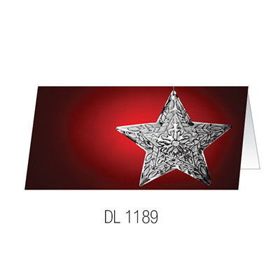 DL1189 Christmas Card